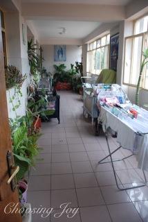 wpid-dsc_3550-wm-2012-07-9-18-48.jpg